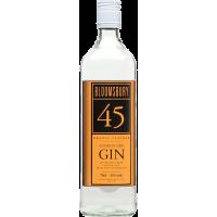 Gin Bloomsburry Orange