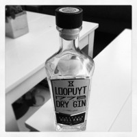 Gin Loopuyt Dry
