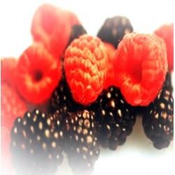 Frutos Silvestres 70 Grs